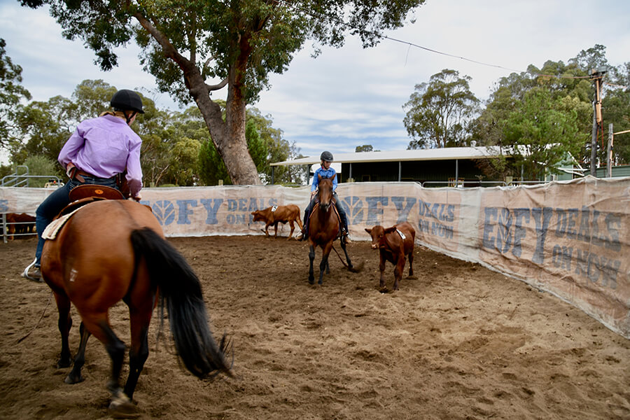 Come along and practice your ranch sorting.